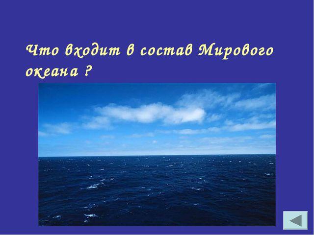 Что входит в состав Мирового океана ?