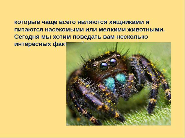 Как известно Пауки́ — отряд членистоногих, которые чаще всего являются хищник...
