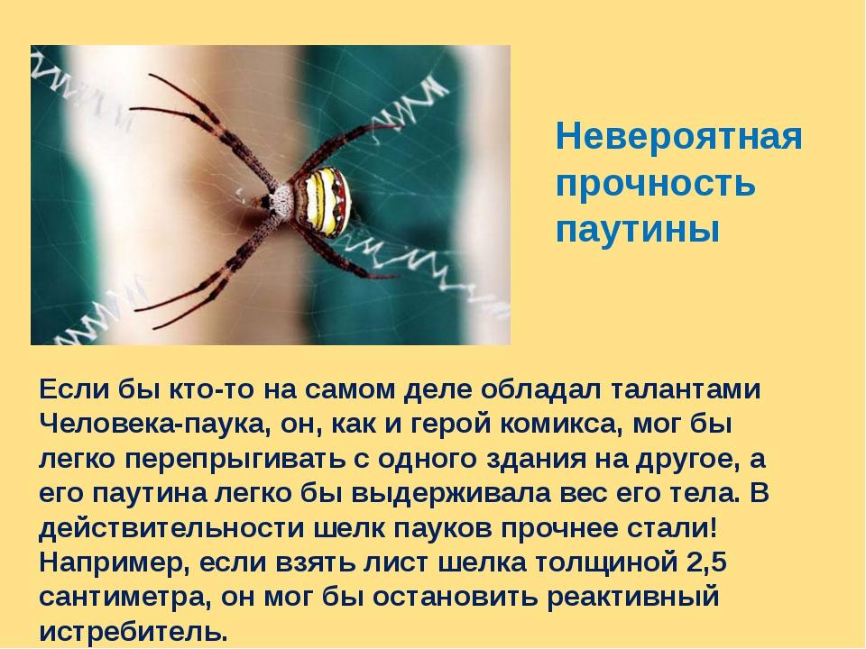 Невероятная прочность паутины Если бы кто-то на самом деле обладал талантами...