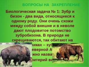 ВОПРОСЫ НА ЗАКРЕПЛЕНИЕ Биологическая задача № 1: Зубр и бизон - два вида, отн