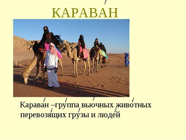 КАРАВАН Караван –группа вьючных животных перевозящих грузы и людей