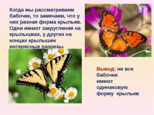 Когда мы рассматриваем бабочек, то замечаем, что у них разная форма крыльев.