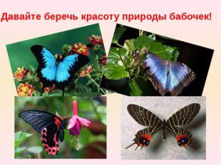 Давайте беречь красоту природы бабочек!