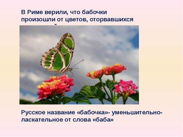 В Риме верили, что бабочки произошли от цветов, оторвавшихся от растений Русс...
