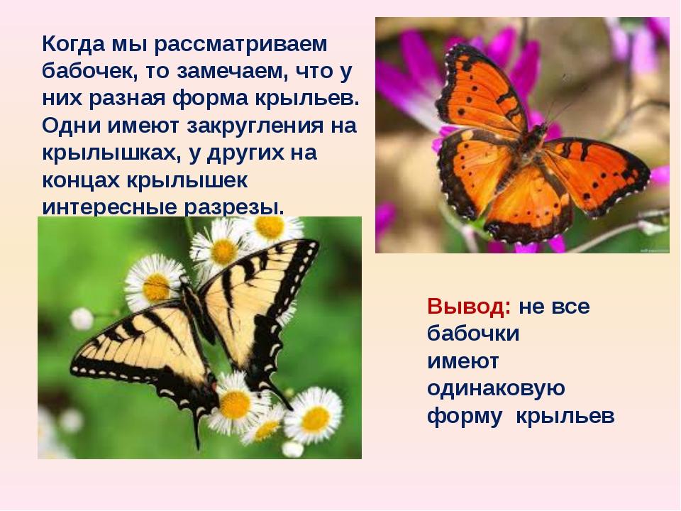 Когда мы рассматриваем бабочек, то замечаем, что у них разная форма крыльев....