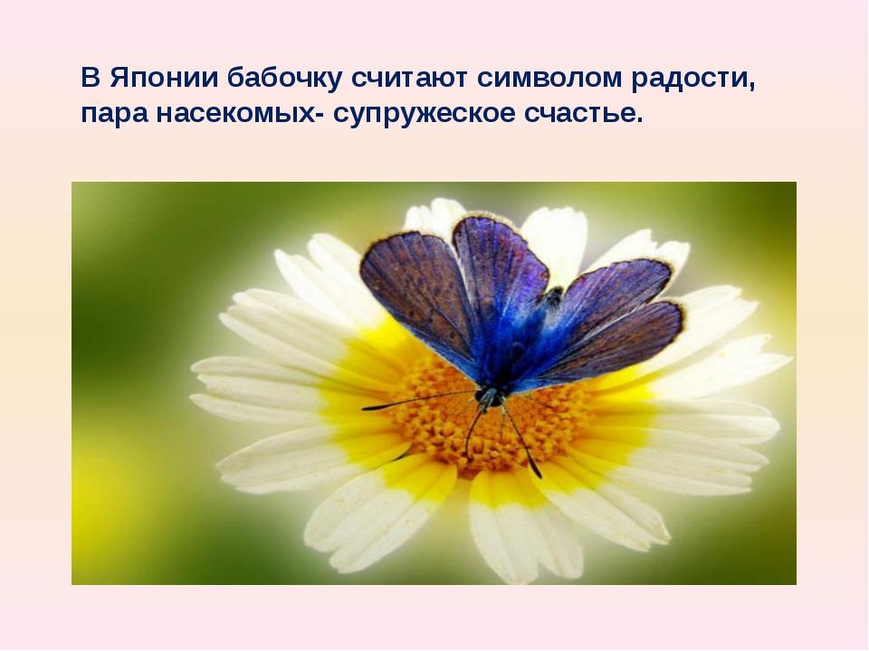 В Японии бабочку считают символом радости, пара насекомых- супружеское счастье.