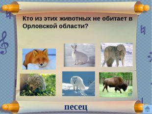 Слова «Орел вспоил на своих мелких водах столько русских литераторов, сколько