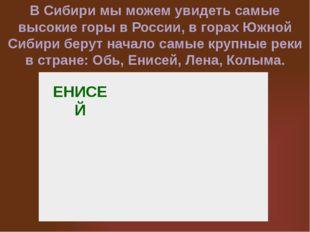 ЕНИСЕЙ В Сибири мы можем увидеть самые высокие горы в России, в горах Южной С