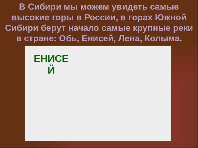 ЕНИСЕЙ В Сибири мы можем увидеть самые высокие горы в России, в горах Южной С...