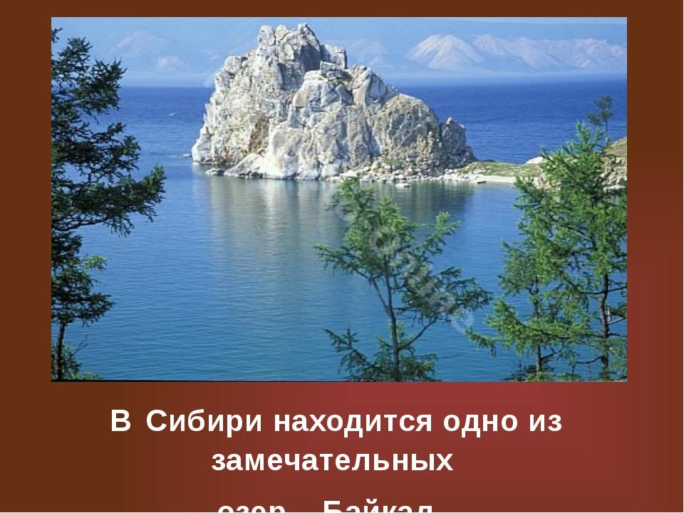 В Сибири находится одно из замечательных озер – Байкал.