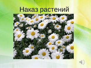 Наказ растений