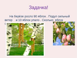 Задачка! На берёзе росло 90 яблок . Подул сильный ветер и 10 яблок упало . Ск