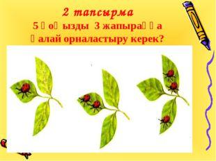 2 тапсырма 5 қоңызды 3 жапыраққа қалай орналастыру керек?