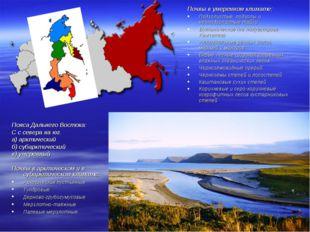 Пояса Дальнего Востока: С с севера на юг. а) арктический б) субарктический в)