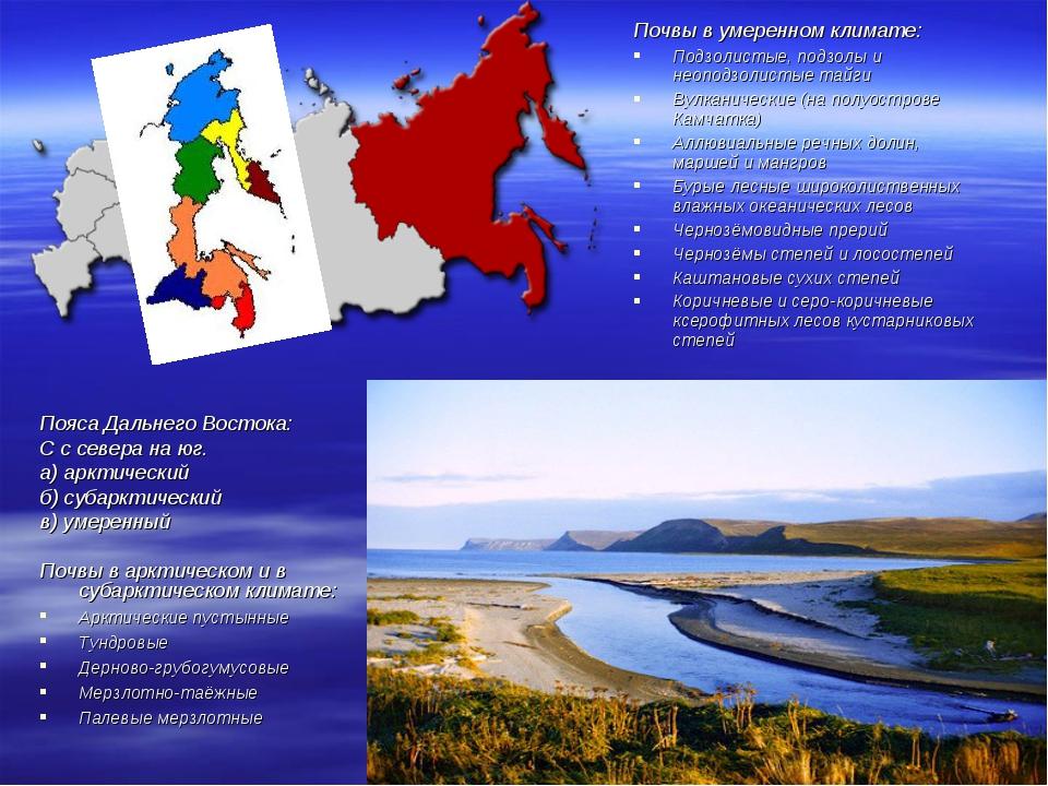 Пояса Дальнего Востока: С с севера на юг. а) арктический б) субарктический в)...