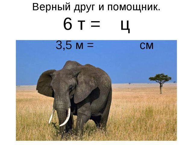 Верный друг и помощник. 6 т = ц 3,5 м = см