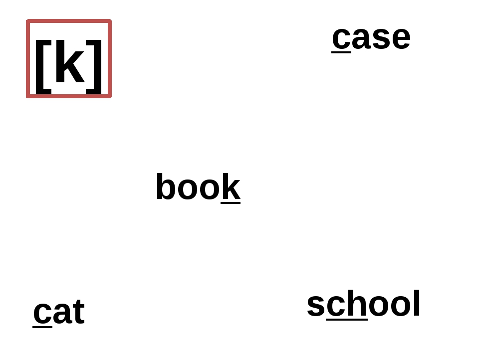 [k] book case school cat