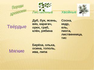 Лиственные Хвойные ТвёрдыеДуб, бук, ясень, вяз, карагач, орех, граб, клён