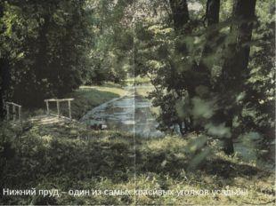 Нижний пруд – один из самых красивых уголков усадьбы