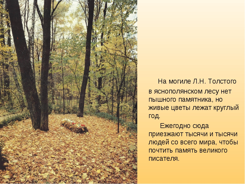 На могиле Л.Н. Толстого в яснополянском лесу нет пышного памятника, но живые...