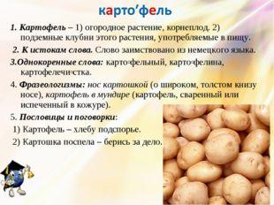 1. Картофель – 1) огородное растение, корнеплод. 2) подземные клубни этого ра