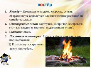 Костёр – 1)горящая куча дров, хвороста, сучьев. 2) травянистое однолетнее ил