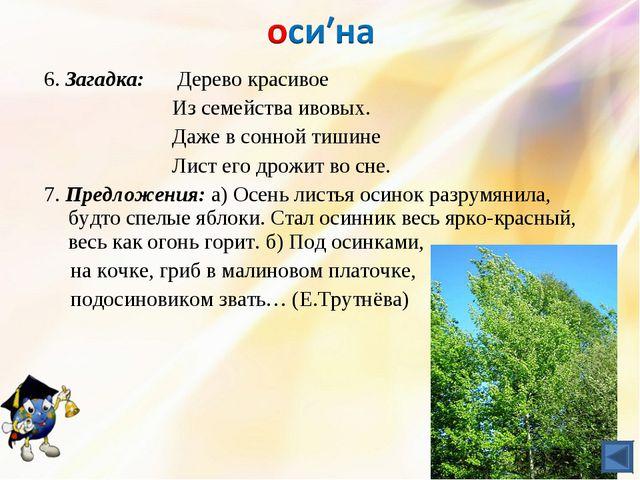 6. Загадка: Дерево красивое Из семействаивовых. Даже в сонной тишине...