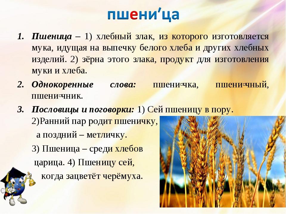 Пшеница – 1) хлебный злак, из которого изготовляется мука, идущая на выпечку...