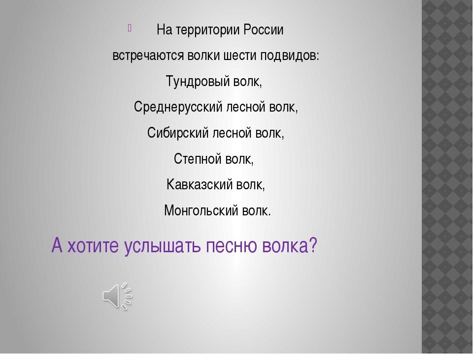 На территории России встречаются волки шести подвидов: Тундровый волк, Средне...