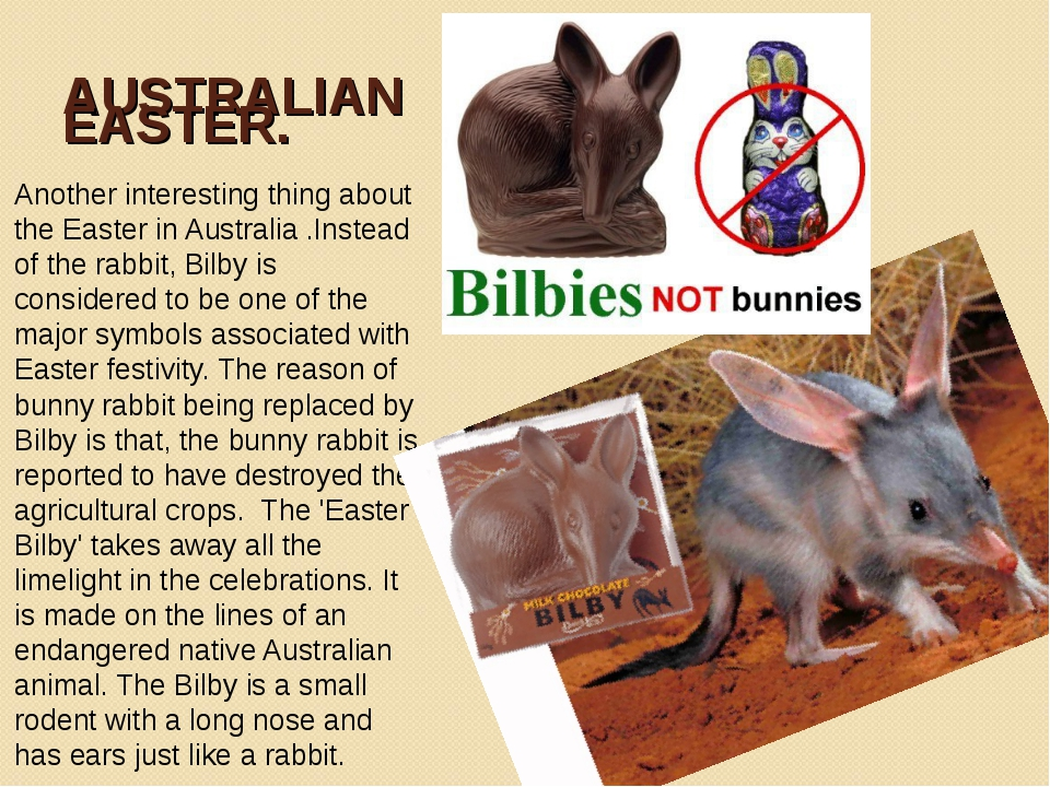 AUSTRALIAN EASTER. Another interesting thing about the Easter in Australia .I...