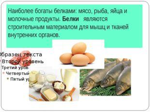 Наиболее богаты белками: мясо, рыба, яйца и молочные продукты. Белки являются