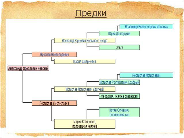Предки 29.4.13