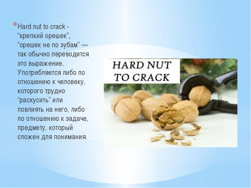 """Hard nut to crack - """"крепкий орешек"""", """"орешек не по зубам"""" — так обычно пере..."""