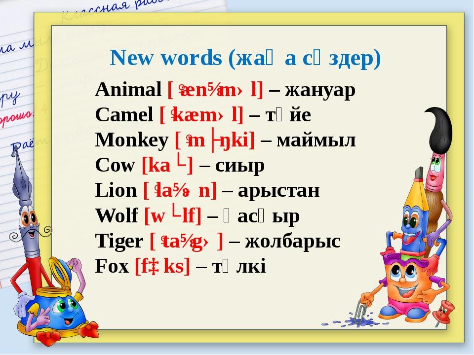 New words (жаңа сөздер) Animal [ˈænɪməl] – жануар Camel [ˈkæməl] – түйе Monke...