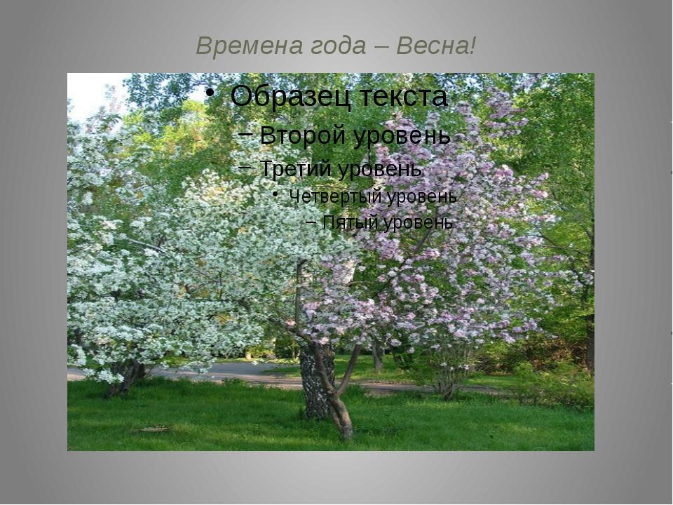 Времена года – Весна!