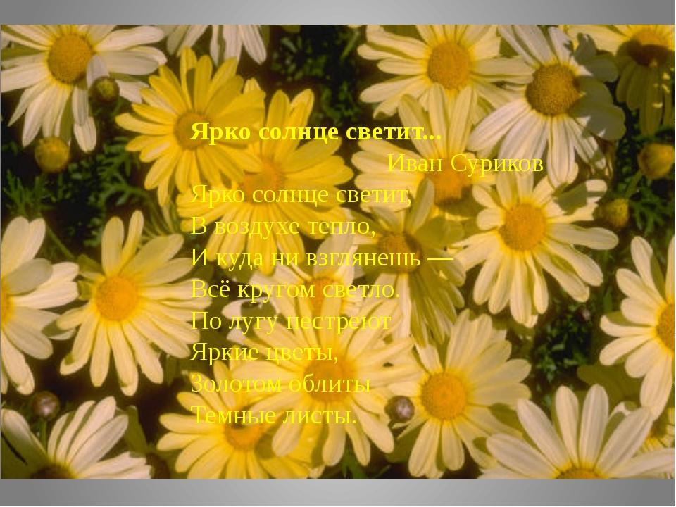 Ярко солнце светит... Иван Суриков Ярко солнце светит, В воздухе тепло, И куд...