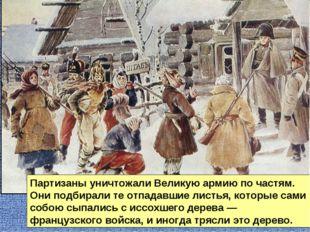 Партизаны уничтожали Великую армию по частям. Они подбирали те отпадавшие лис