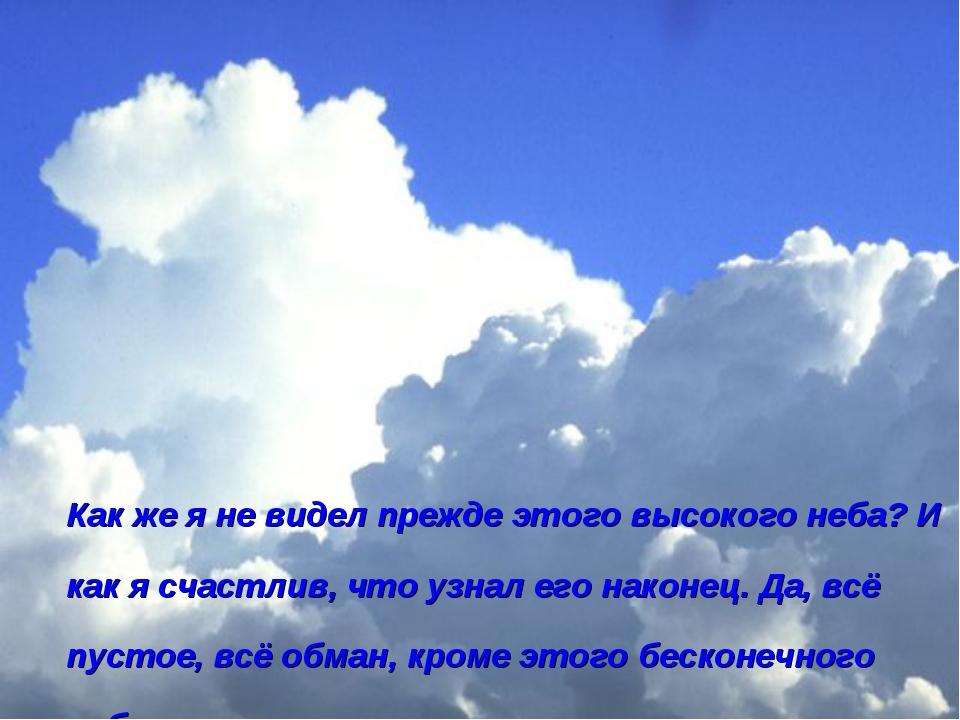Как же я не видел прежде этого высокого неба? И как я счастлив, что узнал его...