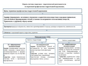 Модель системы социально – педагогической деятельности по по первичной профил