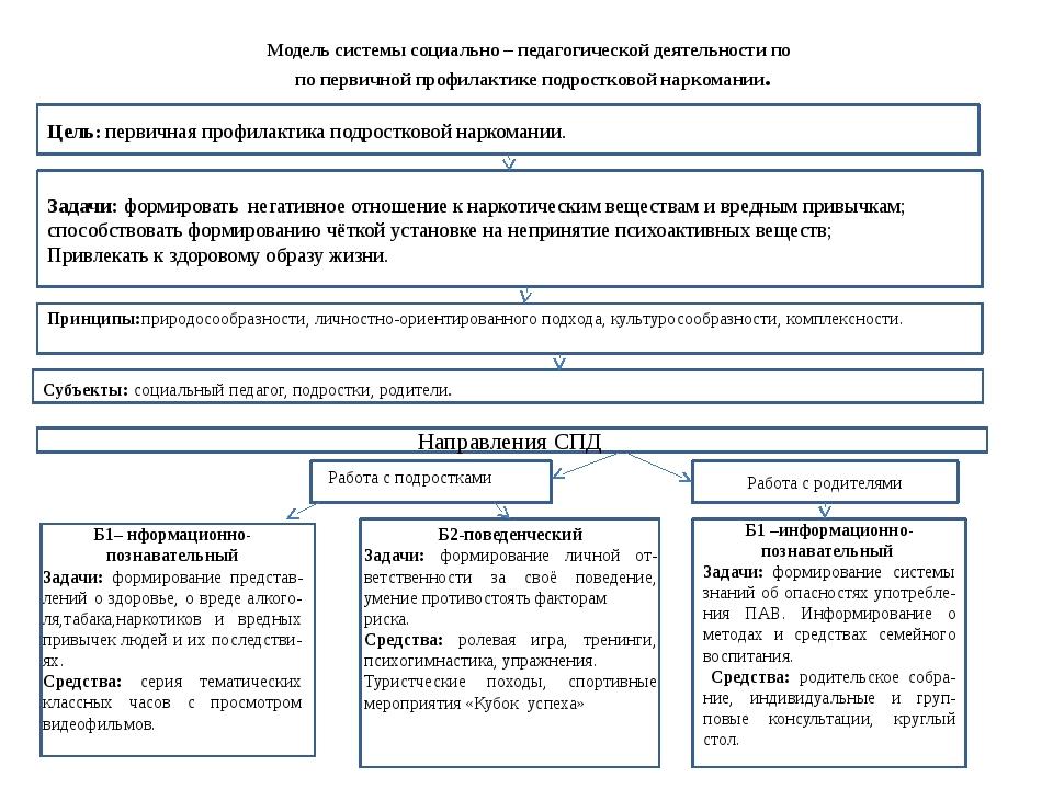 Модель системы социально – педагогической деятельности по по первичной профил...