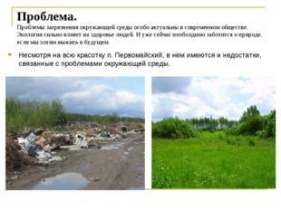 Проблема. Проблемы загрязнения окружающей среды особо актуальны в современном