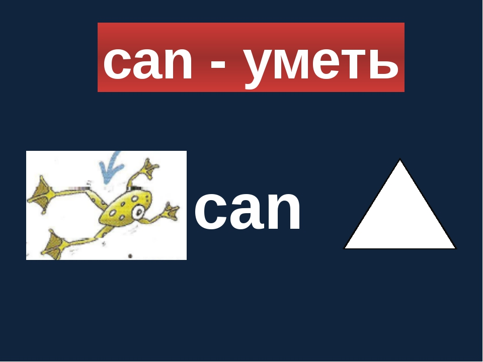 can - уметь can
