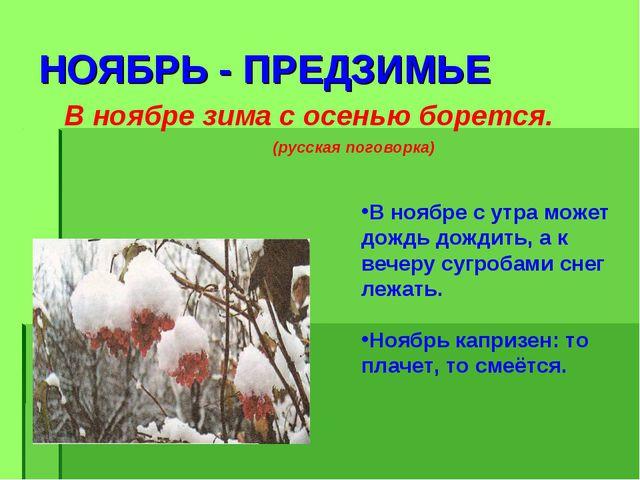 НОЯБРЬ - ПРЕДЗИМЬЕ В ноябре зима с осенью борется. (русская поговорка) В нояб...