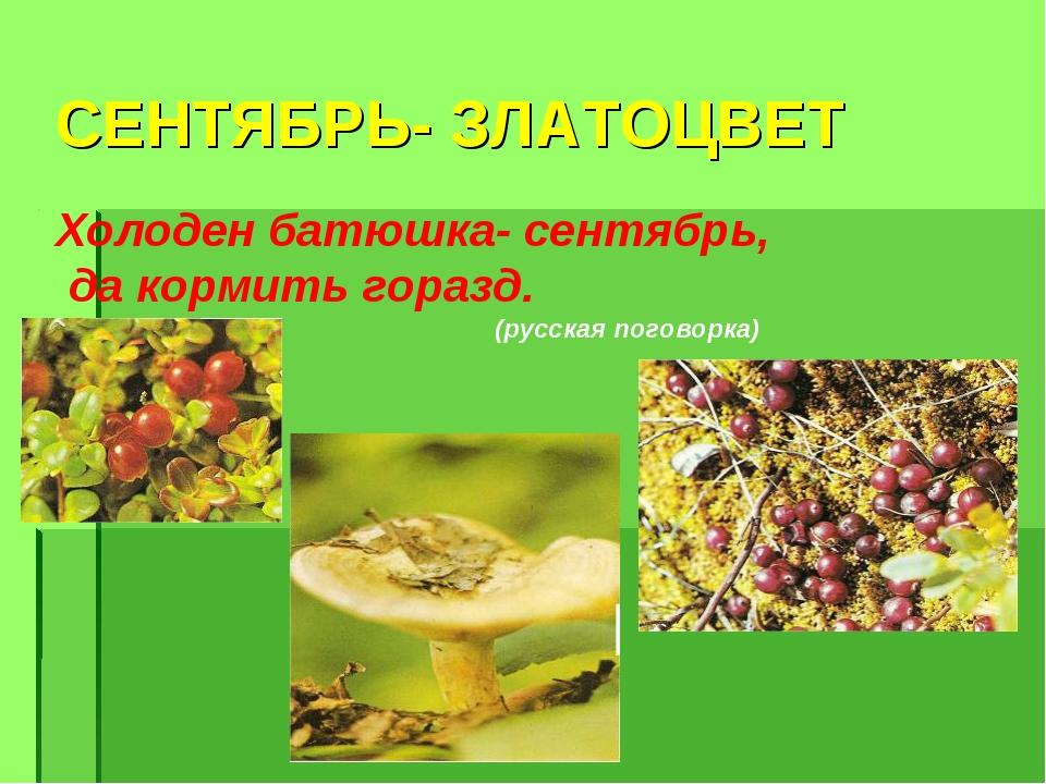 СЕНТЯБРЬ- ЗЛАТОЦВЕТ Холоден батюшка- сентябрь, да кормить горазд. (русская по...