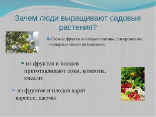 Зачем люди выращивают садовые растения? Свежие фрукты и плоды полезны для орг