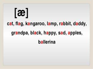 [æ] cat, flag, kangaroo, lamp, rabbit, daddy, grandpa, black, happy, sad, app