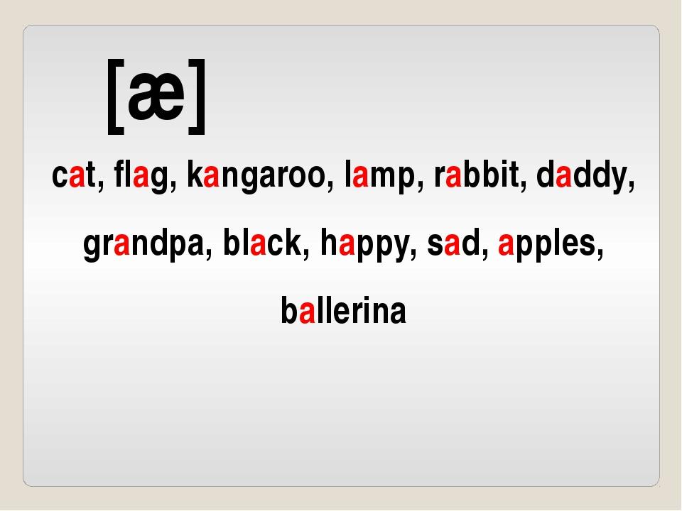 [æ] cat, flag, kangaroo, lamp, rabbit, daddy, grandpa, black, happy, sad, app...