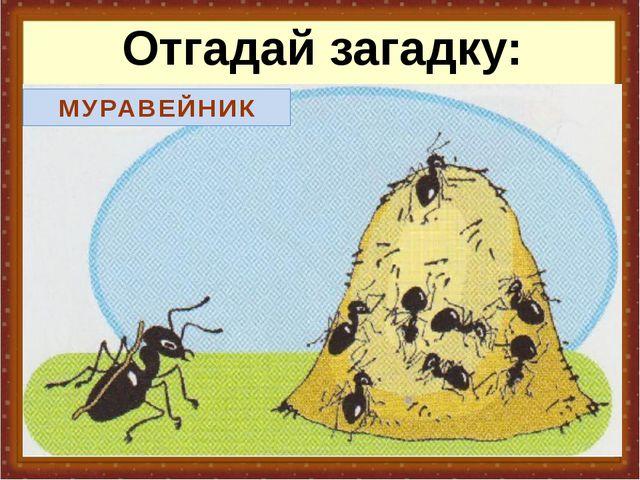 Отгадай загадку: За пнем – бугорок, А в нем – городок.  В.Мусатов. 6 х МУР...