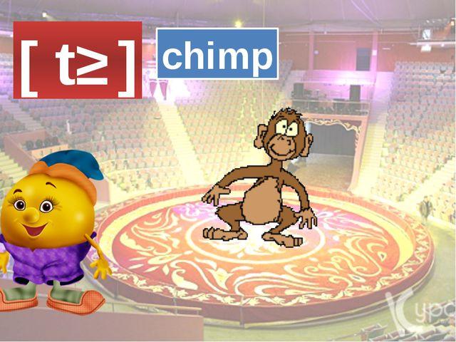 [ tʃ ] chimp