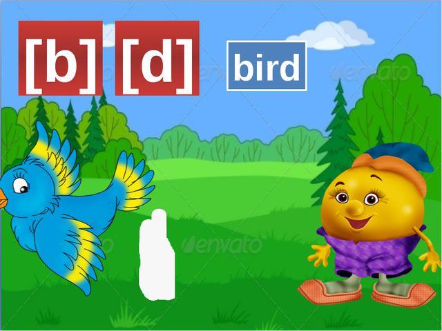 [b] bird [d]